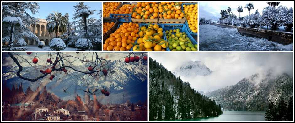 Хурма, мандарины-все это Абхазия!!! Цены с авиаперелетом 6800.