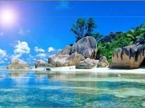 Шри-Ланка – удивительный остров! 11 дней от 29300 рублей.