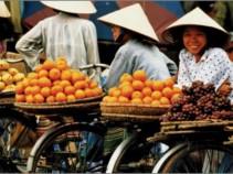 Вьетнам на 2 недели по цене авиаперелета!