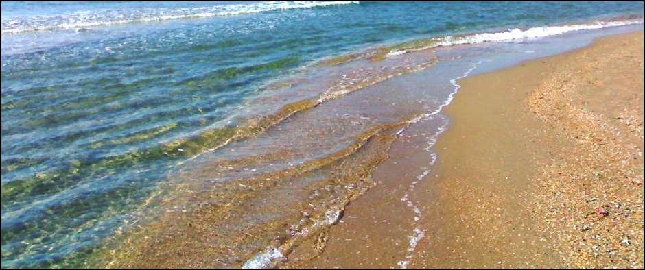 Море. Солнце. Лето. Черноморские курорты.  Цены от 3400 рублей.