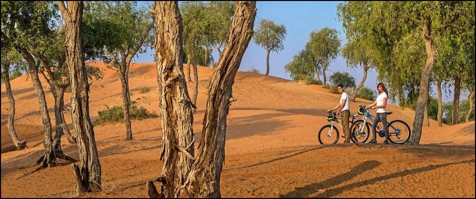 Banyan Tree Al Wadi