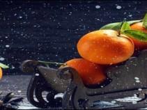 Сказочный Новый год в Абхазии! Туры с авиаперелетом от 18600 рублей.