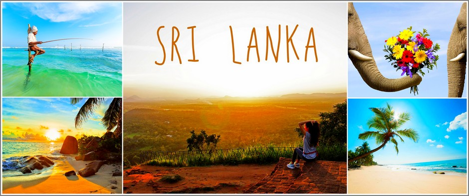 Шри-Ланка – удивительный остров! 13 дней от 44600 рублей.