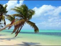 Доминиканская Республика — благодатный край! Цены от 33000 рублей.