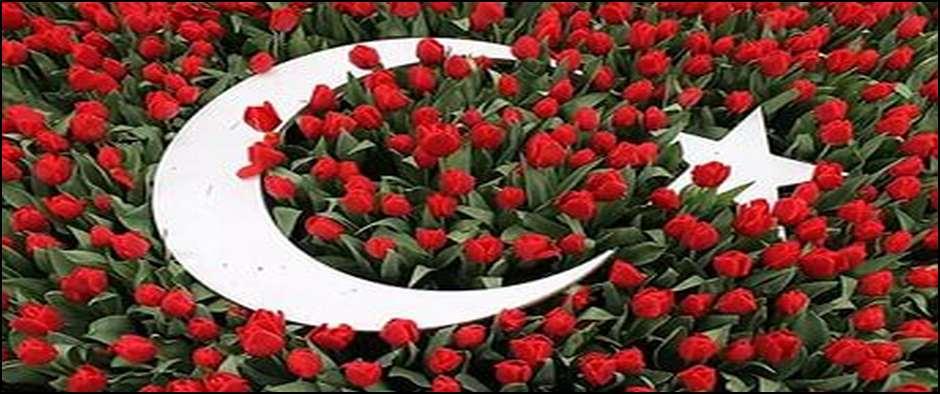 Неделя отдыха в Турции, ВСЕ ВКЛЮЧЕНО от 13500 рублей.