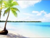 Карибское море, зовет Вас! Доминикана 10 ночей от 54000 рублей.