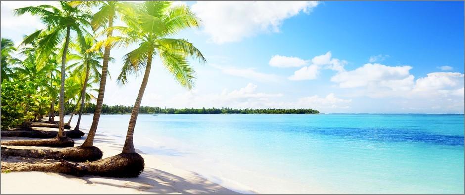 туры в Доминикану от 52 500