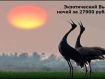 Экзотический Вьетнам! На 11 ночей за 27900 рублей.