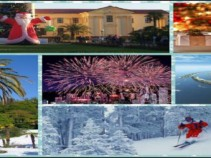 Чем заняться в Сочи на Новый год?