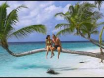 Карибское море, Вас зовет! Доминикана 9 дней от 40000 рублей.