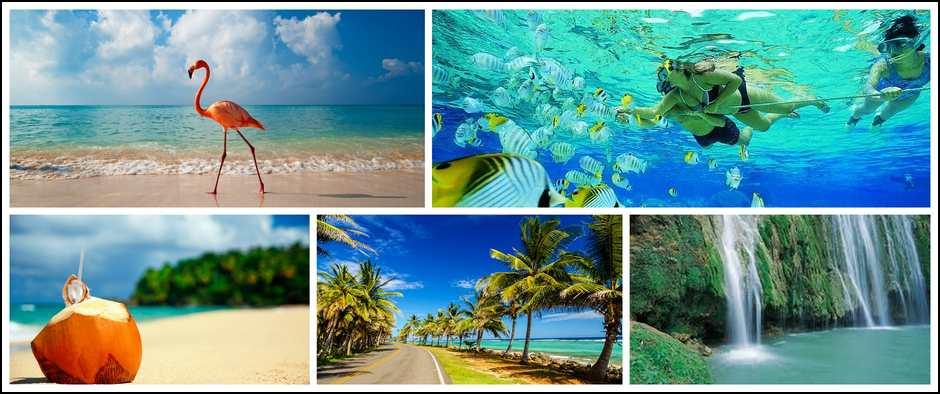 Рифы Карибского моря, жду только Вас!!!! Стоимость от 35000 рублей.