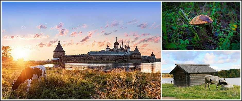 «3 дня на Соловецких островах из Москвы» 5 дн./4 ночи.