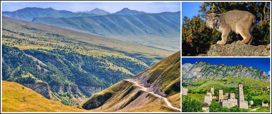 «Выходные на Северном Кавказе» (4 дн./3 н.), экскурсионный, Северный Кавказ