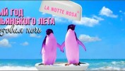 Событие, запоминающееся навсегда — Фестиваль «Розовая Ночь» на Адриатическом побережье!