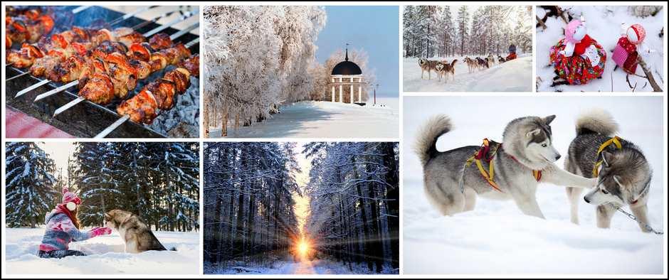 """В гости к хаски + Дед Мороз """" (2 дн./1 н.), 06.01-07.01"""