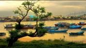 13 способов понять Вьетнам.