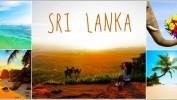 Невиданные скидки: ГОРЯЩИЕ ТУРЫ на Шри-Ланку, на 12 дней за 32 900 рублей!