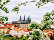 Удивительный и романтичный город Прага ждёт Вас! Туры 04.06.2020 на 8 дней от 25500 рублей!