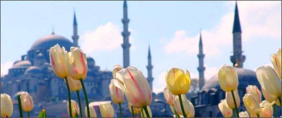 В апреле пройдёт знаменитый фестиваль тюльпанов в Стамбуле! У Вас есть шанс увидеть эту красоту наяву!