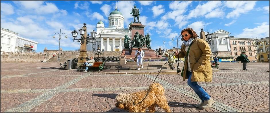 Незабываемый 5-дневный круиз по Балтийским и Скандинавским столицам: цены от 4 500 рублей!