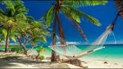 Надоели Турция и Тунис? Хочется новенького? остров Занзибар 13 дней за 44000 руб!