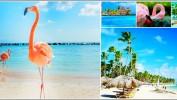 Доминикана — отдых Вашей мечты! Райское место стало доступнее: туры на 13 дней на «Всё включено» за 52 900 рублей!