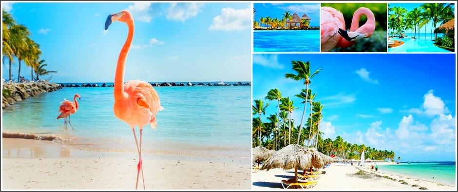Карибское море, зовет Вас! Доминикана 11 дней от 51000.