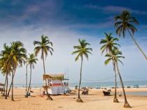 Отличное предложение на туры в Индию, Гоа: отдых на 10 дней от 21 300 рублей!