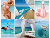 Акция на туры в Доминикану на ноябрь! Цены на 11-дневный отдых от 53 800 рублей!