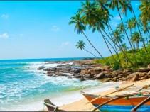 Великолепный отдых на широких песчаных пляжах Шри-Ланки: 13 дней за 36 300 рублей!