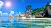 Шри-Ланка – удивительный остров! 11 ночей от 35000 рублей.