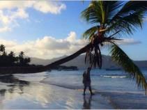 Новые курорты Доминиканы! Особенности, что посмотреть.