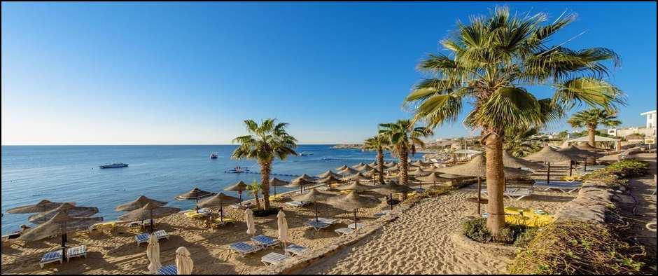 Отдых в Египте - это великолепная Хургада. 8 дней от 35700 рублей.