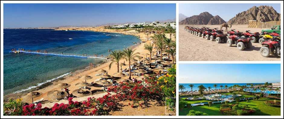 Затеплом вЕгипет, туры на 9 дней от 24000 рублей.