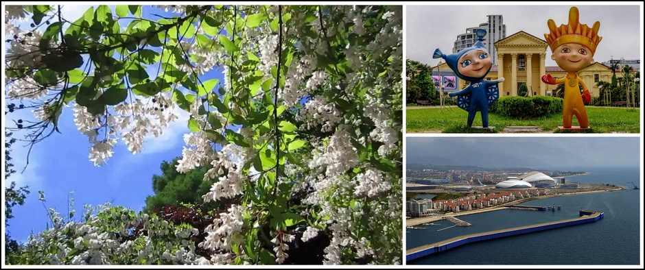 Сочи: майские праздники от 1650 рублей за 5 дней.