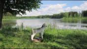Рябово – тихое село, где зарождались истоки русской культуры.