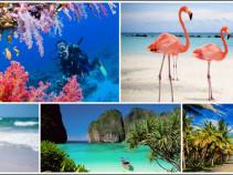 Карибское море зовет Вас! Доминикана на 10 ночей от 57 400 рублей!