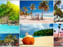 Доминикана – отдых Вашей мечты! Туры на 12 дней от 62 100 рублей!
