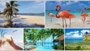 Доминикана – отдых Вашей мечты! Туры на 11 ночей от 57 300 рублей!