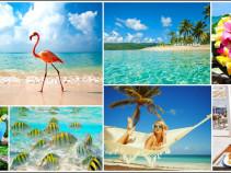 Доминикана – отдых Вашей мечты! Туры на 11 дней от 59 700 рублей!