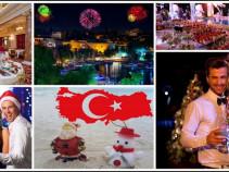 Новый год в Турции. Отелис новогодней программой. 