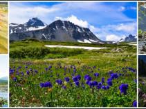 Алтай – это целый мир. Туры с перелетом 6 дней от 15800 рублей.